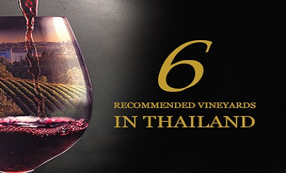 6 Recommended Vineyards in Thailand