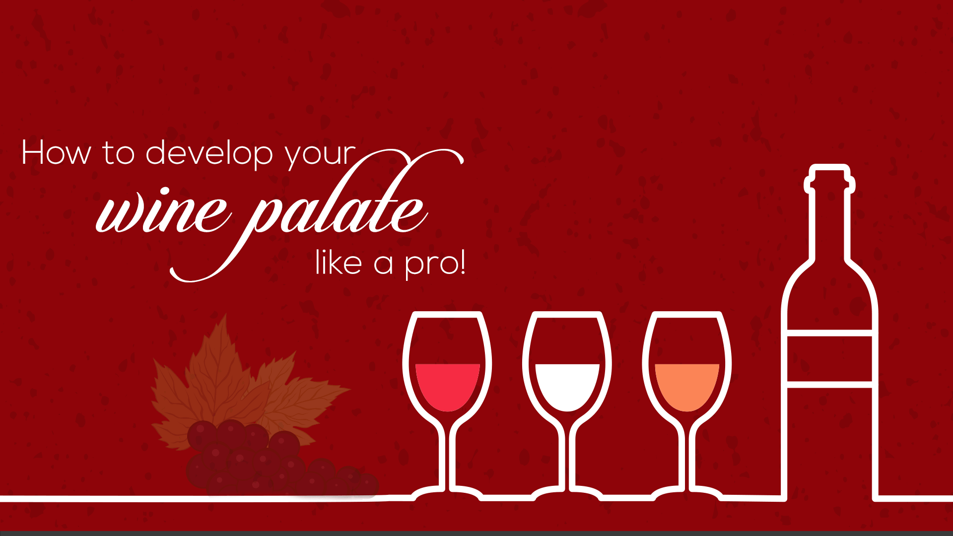 How to develop your wine palate like a pro!