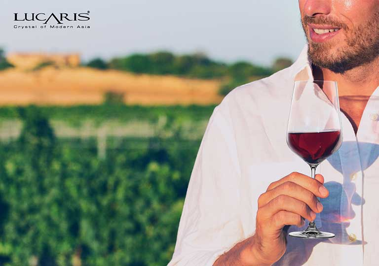 All you need to know about Bordeaux Wine